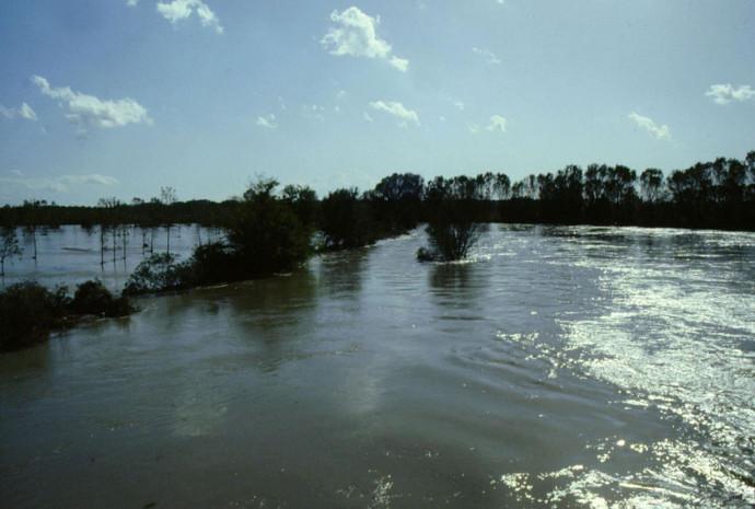 Natura e fiumi: il fiume Adda