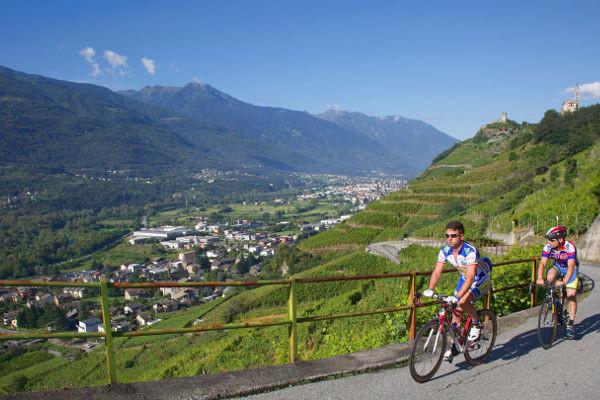 Terrazzamenti in Valtellina, Sondrio